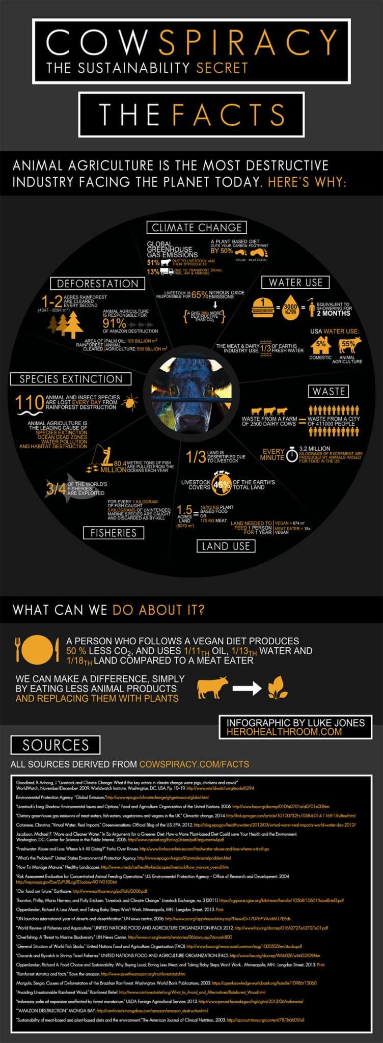 el efecto de la industria animal